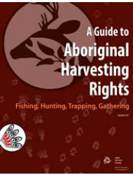 A-Guide-to-Aboriginal-Harvesting-Rights-416-1-lss.png